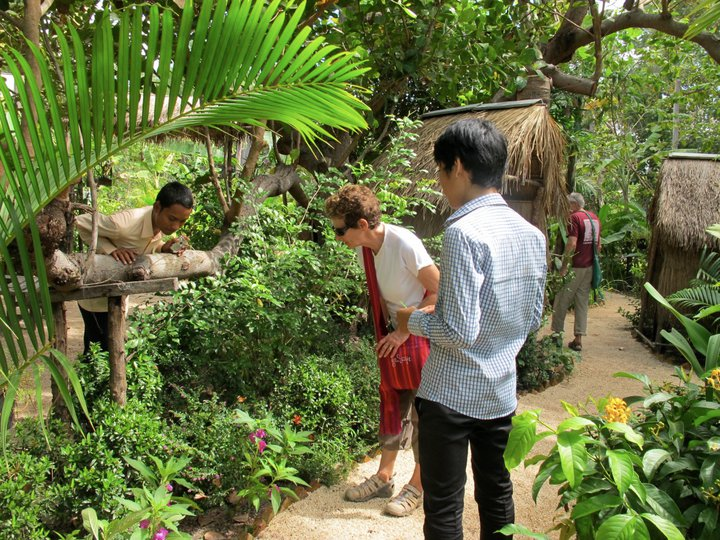 Siem Reap - Centre Papillons