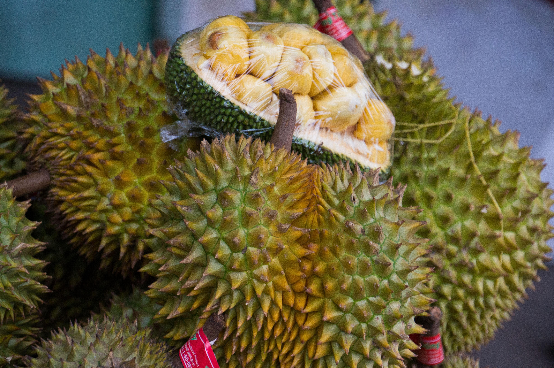 cuisine cambodgienne - durian