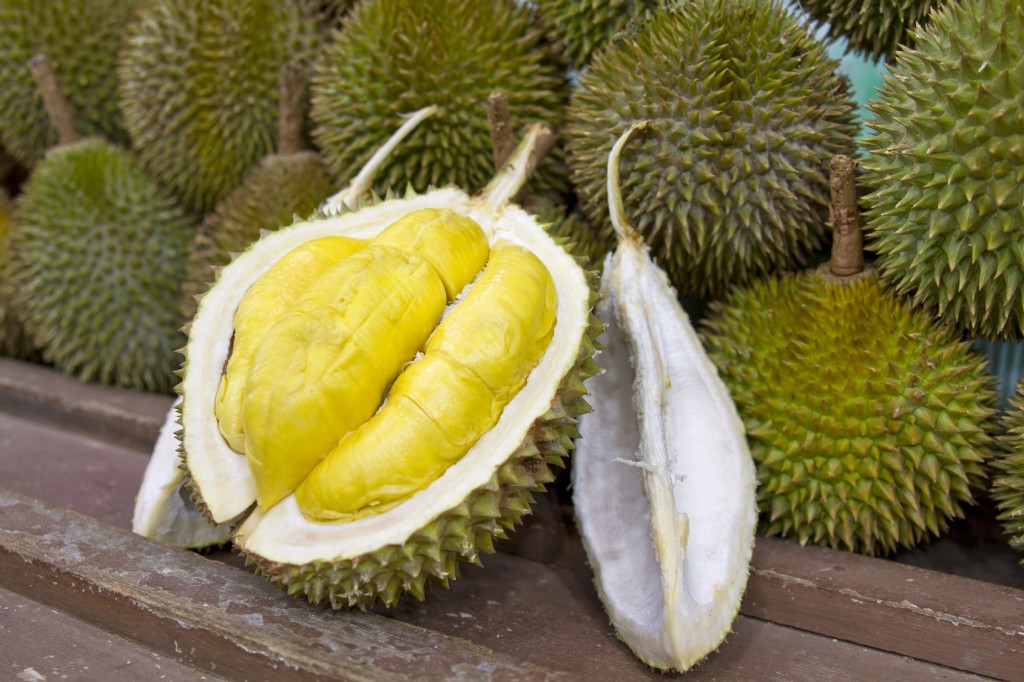 """Résultat de recherche d'images pour """"durian"""""""
