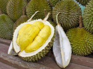 Le Durian - Voyage au Cambodge